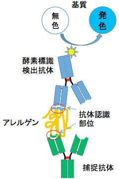 pic_research_development02